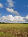 Campo sotto un grande cielo Immagine Stock Libera da Diritti