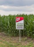 Campo sperimentale del cereale di seme di Midwest U.S.A. Fotografia Stock