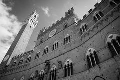 Campo Square in Siena, Italy Stock Photos