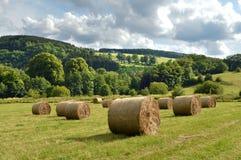 Campo su un paesaggio collinoso Fotografia Stock