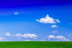 Campo su una priorità bassa del cielo blu Immagine Stock
