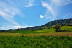 Campo suizo del paisaje durante la primavera Imagen de archivo libre de regalías