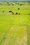 Campo tailandés con arroces de arroz Fotos de archivo libres de regalías