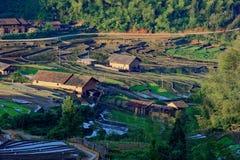 Campo a terrazze collinoso Fotografie Stock
