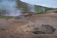 Campo in Thingvallavatn, a sud dell'Islanda Fotografia Stock Libera da Diritti