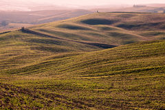 Campo toscano, andscape italiano del lautumn Imagenes de archivo