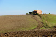 Campo toscano, paisaje italiano Imagenes de archivo