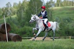 A campo través. Jinete no identificado en caballo Foto de archivo