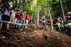Campo a través 2013, Mont Ste-Anne, B del mundial de UCI imágenes de archivo libres de regalías