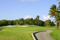 Campo tropical do golfe de Miami Key Biscayne Imagem de Stock