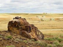 Campo uranio. Gamma industriale. Fotografia Stock Libera da Diritti