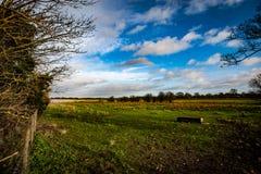 Campo vacío y cielo tempestuoso Foto de archivo libre de regalías