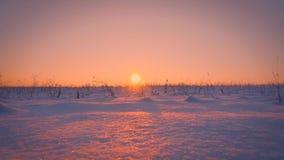 Campo vazio surpreendente do inverno que iluminam no por do sol amarelo bonito ou nascer do sol que segue o tiro filme