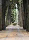 Campo Verano begraafplaats in Rome Stock Afbeeldingen