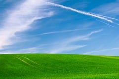 Campo verde fotografia de stock