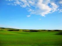 Campo verde Imagens de Stock Royalty Free
