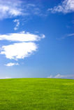 Campo verde Imagenes de archivo