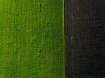Campo verde aereo fotografia stock