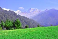 Campo verde al fondo della montagna Fotografia Stock