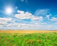 Campo verde bajo el sol azul de la pizca del cielo nublado Fotografía de archivo libre de regalías