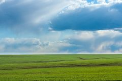 Campo verde com grama vibrante fresca e o céu azul com as nuvens dramáticas no dia Fotografia de Stock