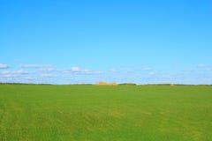 Campo verde com pilha Fotografia de Stock