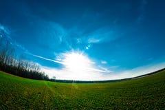 Foto verde del fisheye del campo fotografia stock libera da diritti