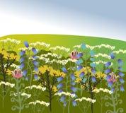 Campo verde con differenti wildflowers Immagine del vettore della natura Immagini Stock Libere da Diritti