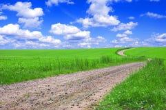 Campo verde con el camino y el cielo azul. Fotos de archivo
