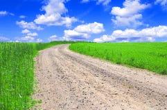 Campo verde con el camino y el cielo azul. Foto de archivo libre de regalías
