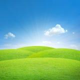 Campo verde con el cielo azul Fotografía de archivo libre de regalías
