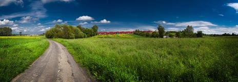 Campo verde con el cielo azul sobre panorama imagen de archivo libre de regalías