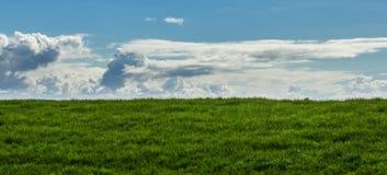 Campo verde con el cielo azul y las nubes Imágenes de archivo libres de regalías