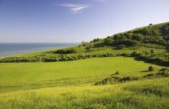 Campo verde con el mar. Imagenes de archivo
