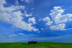Campo verde con il cielo blu scuro con i clousds bianchi, Toscana, Italia Paesaggio della Toscana di estate Prato verde di estate Fotografia Stock Libera da Diritti