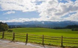 Campo verde con la rete fissa di legno in Baviera Fotografia Stock