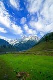 Campo verde con las montañas imágenes de archivo libres de regalías