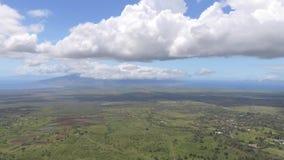 Campo verde del campo en paisaje del día de verano con las nubes blancas mullidas en cielo azul profundo en la opinión aérea de l almacen de metraje de vídeo