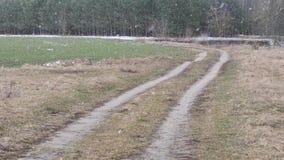 Campo verde di inverno innevato la terra stock footage