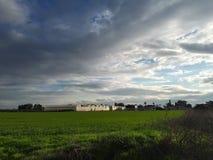 Campo verde dopo la pioggia Fotografie Stock