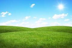 Campo verde e céu azul Fotos de Stock
