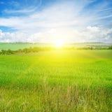 Campo verde e céu azul com nuvens claras Acima do horizonte é imagem de stock royalty free