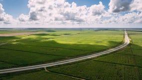 Campo verde e céu azul Estrada no meio fotos de stock royalty free