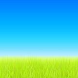 Campo verde e céu azul Vetor Imagens de Stock