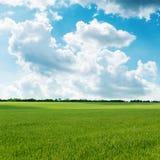 Campo verde e céu nebuloso fotos de stock
