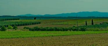 Campo verde e montagne didstant Immagini Stock Libere da Diritti