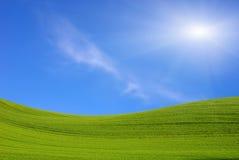 Campo verde e o céu azul com sol Fotografia de Stock
