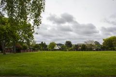 Campo verde e paesaggio suburbano delle case Immagini Stock