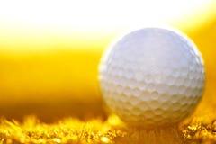 Campo verde e sanset bianco della palla da golf Immagine Stock