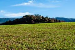 Campo verde em Provence, França Fotografia de Stock